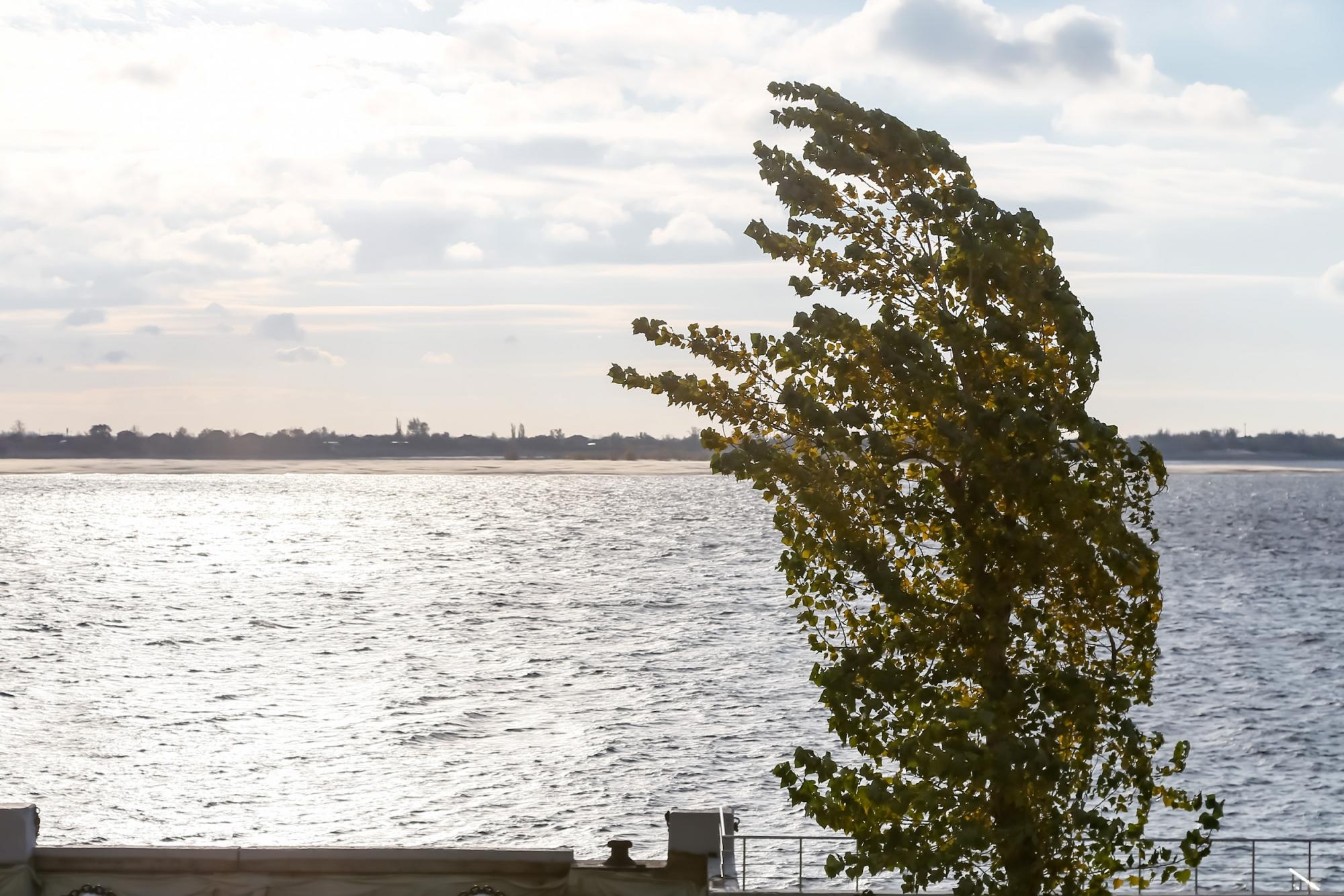 МЧС: вВолгоградской области вечером 31мая предполагается усиление ветра