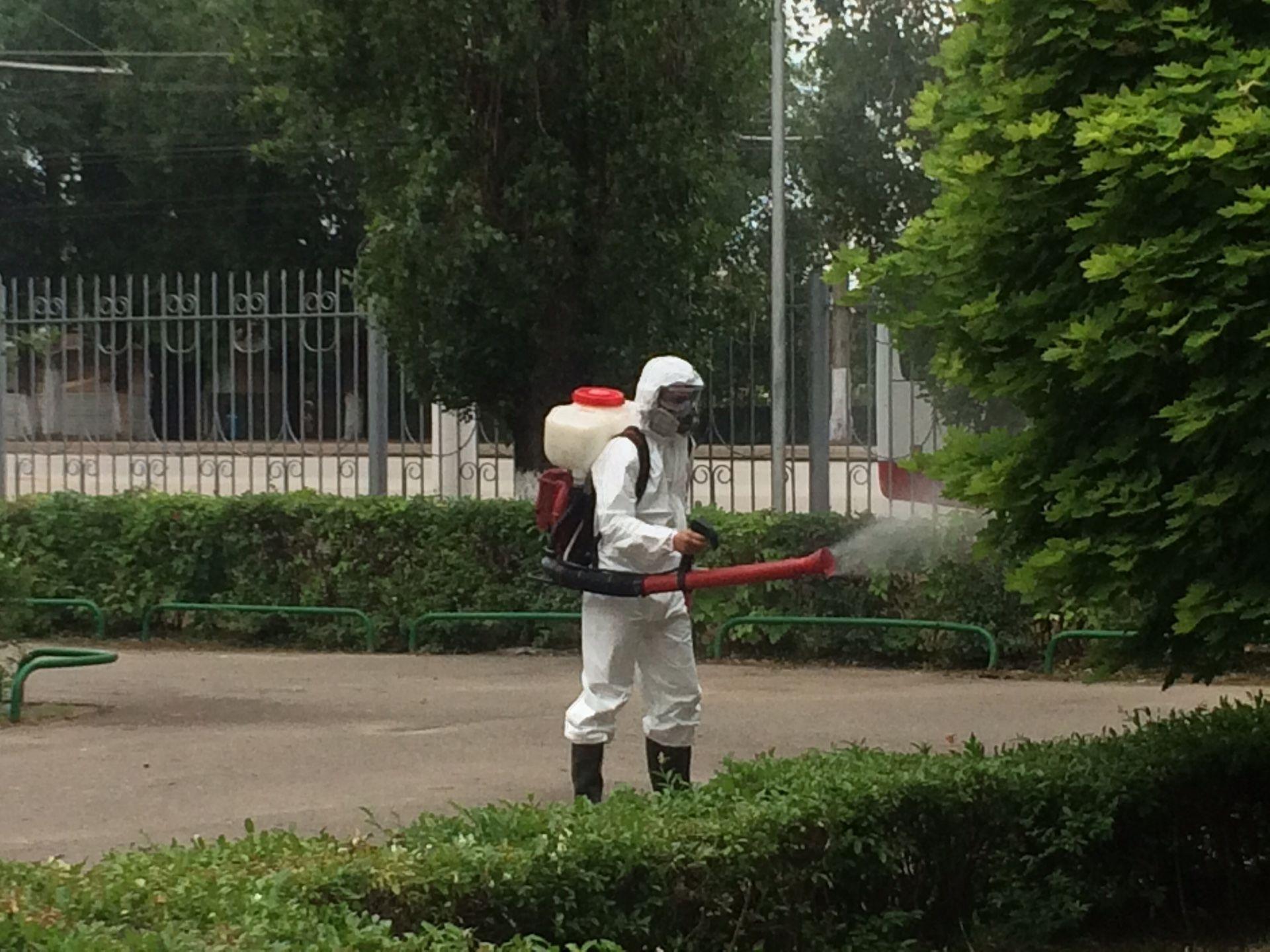 Водоемы ипляжи Волгоградской области обработают отвредителей