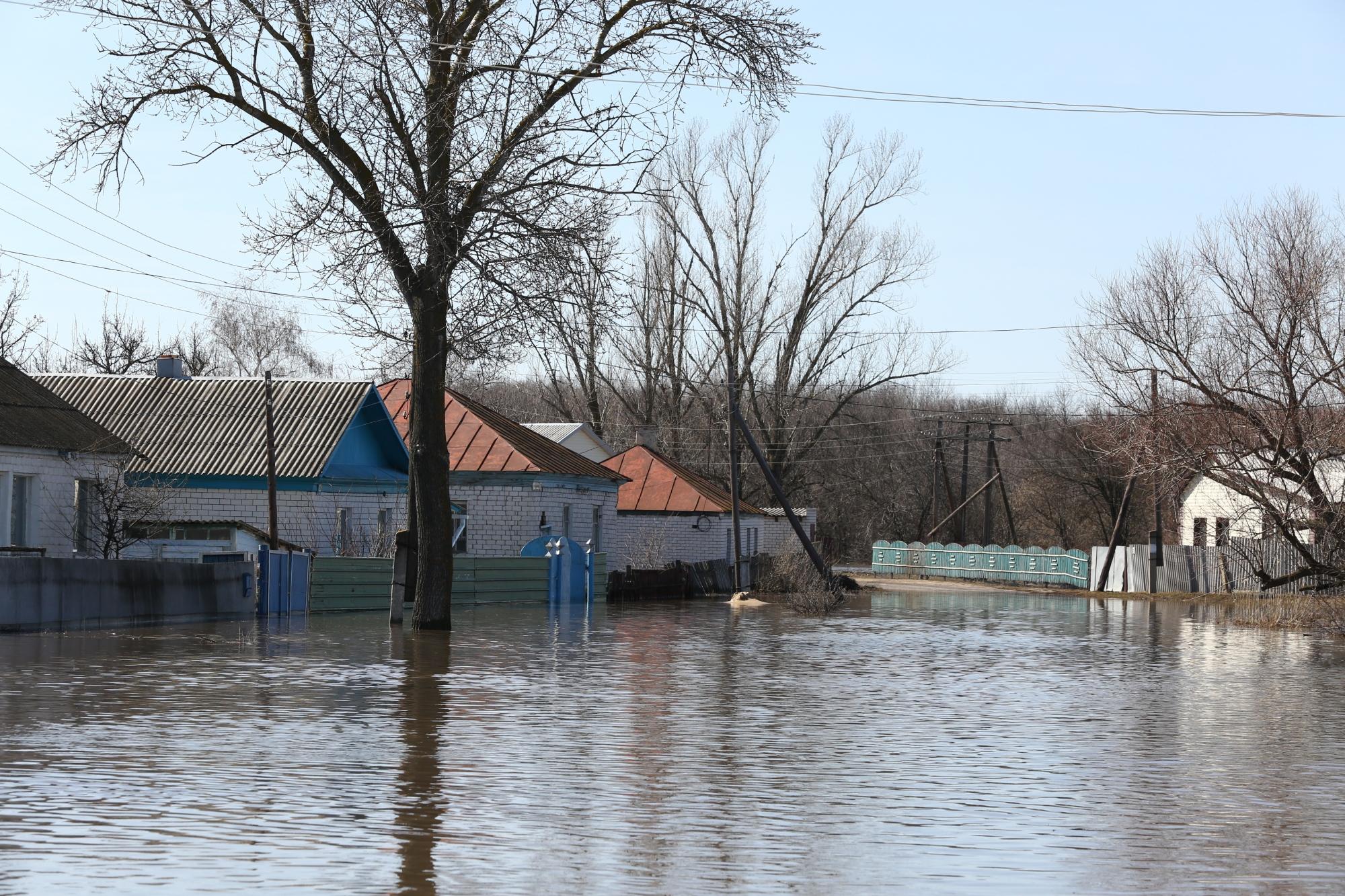Под Волгоградом 94 семьи, пострадавшие отпаводка, получили выплаты