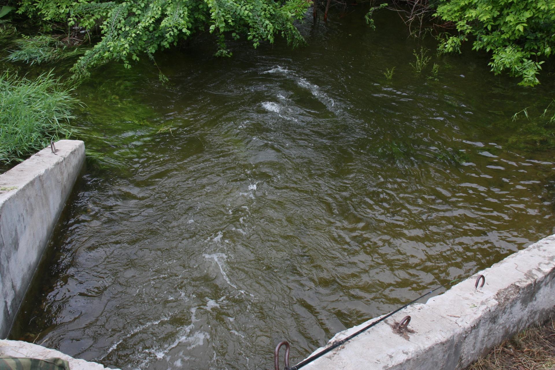 ВВолгоградской области нанеделю продлят повышенный сброс воды через Волжскую ГЭС