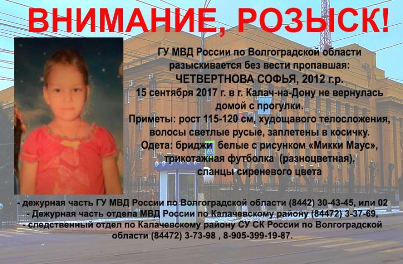 ВВолгоградской области сдетской площадки пропала пятилетняя девочка