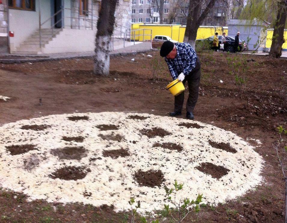 Клумбу ввиде футбольного мяча около дома сделал волгоградский ветеран