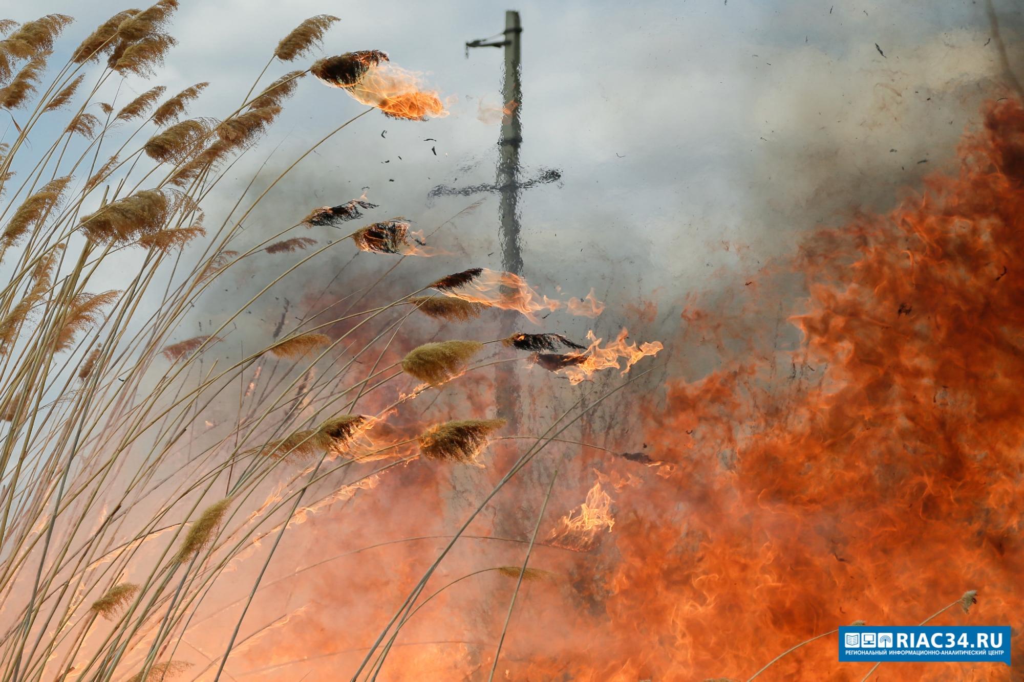 Для обнаружения лесных пожаров врегионе будут использовать систему Минобороны