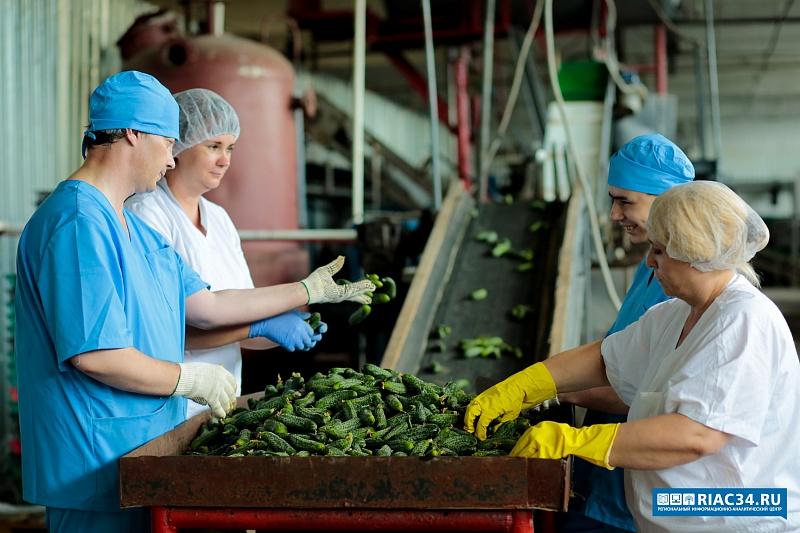 Наюге Волгограда открылся завод попереработке овощей